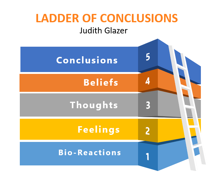 Conversational Blind Spots Ladder of Conclusions