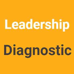 Leadership Diagnostic